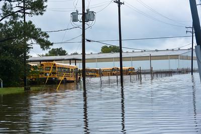 East Baton Rouge Parish Schools Bus yard. Mid Day 8/13/2016.
