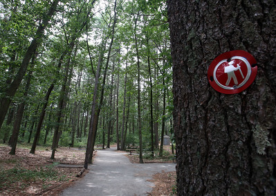 Places to cool off: Manning State Forest in Billerica has walking trails and a Water Playground. (SUN/Julia Malakie)