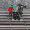Spectators huddle under umbrellas in a heavy rain at the Chelmsford-Methuen girls lacrosse game. Clockwise from top left: Scott McQuaide, David Kampner, Scott's wife Susan McQuaide and David's wife Toni Kampner, whose daughters play for Chelmsford, were among the few spectators in a downpour. (SUN/Julia Malakie)
