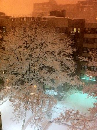 Blizzard - January 2011