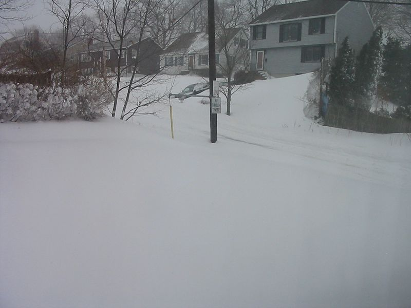 yard and street