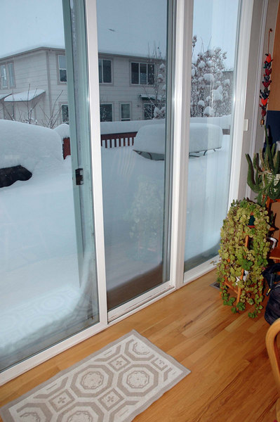 In Littleton, the official snow depth was about 32 inches after 24 hours. This is the view out the sliding door.