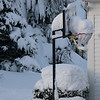 The basketball hoop in the driveway of our neighbors' house...across the street.