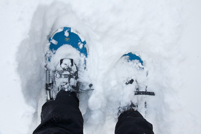 I haven't worn snowshoes in years.