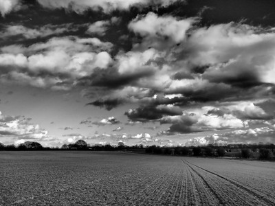 Rural landscape black and white