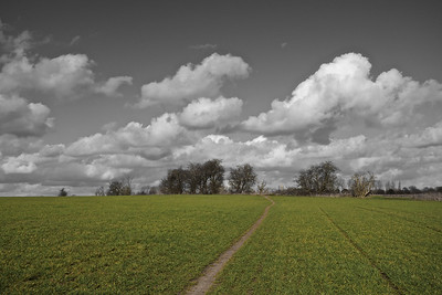 Rural landscape with clouds monochrome