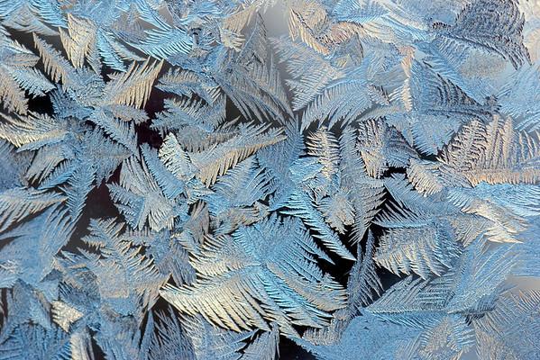 Brrr Cold Dec 2009