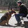 Peter Conrad of Concord give his German shepherd, Greta, ice cream at the ice cream stand at Great Brook Farm State Park in Carlisle. It's a favorite spot because Greta likes the cows, and every so often she gets ice cream. (SUN/Julia Malakie)