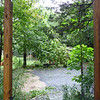 After - backyard gate covered with fallen branch