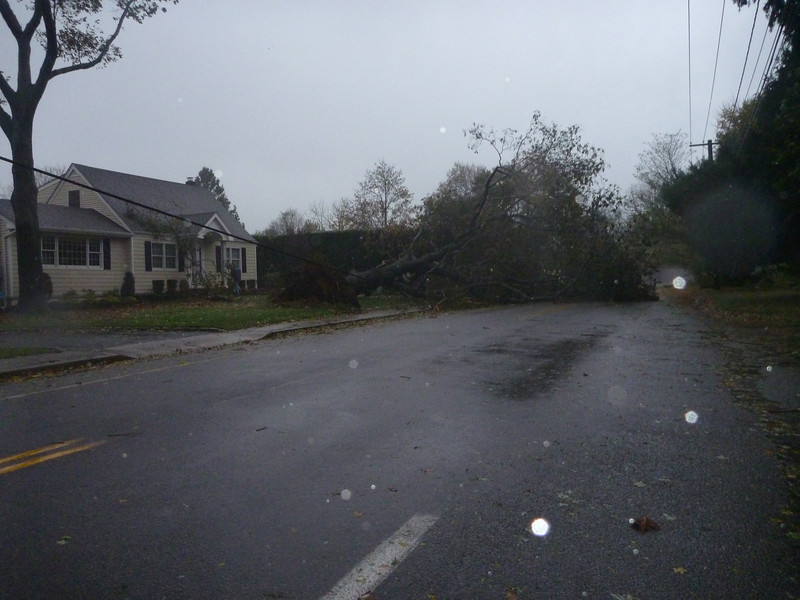 Monday, during the storm, two doors down on Burr Road looking west. Road blocked and cable lines down.  This house is owned by a tree and lawn care guy.
