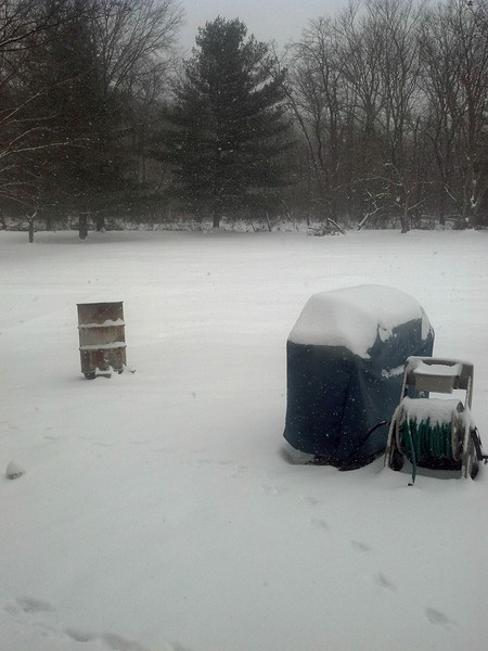 "Dawn Van Zile submitted this photo via Facebook and said, ""My back yard is so pretty when it snows!"""
