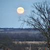 Moon 12-12-08 4:56 PM