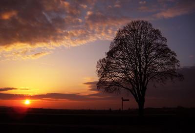 20170216_90km_SunsetKnoblauchsland_3981