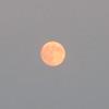 """<a href=""""https://salphotobiz.smugmug.com/Other/Night-Time-Sky/i-76fkPdF"""">https://salphotobiz.smugmug.com/Other/Night-Time-Sky/i-76fkPdF</a>"""