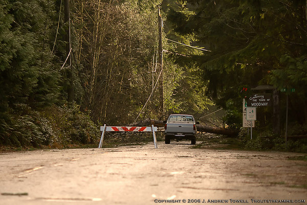 Snapshot gallery of images from the December 15th, 2006 windstorm that struck the Pacific Northwest. High winds and saturated soils lead to downed trees and power outages in timbered areas. Images include downed trees in the Town of Woodway and clean up and repair efforts. All files are Copyright © 2006 J. Andrew Towell All rights reserved. Please contact me at troutstreaming@gmail.com to negotiate for any and all usage rights.