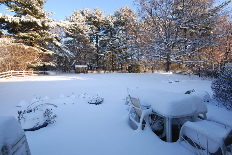 Our snowy yard