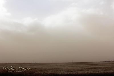 Dirt Storm Dec 2012