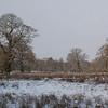 Dunham Park in the snow, 01/12/2010