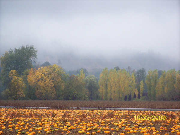 Fall in the PacNW - Oct 2009