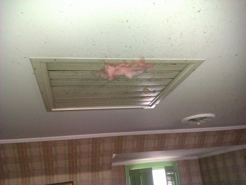 Attic Insulation coming through the attic fan