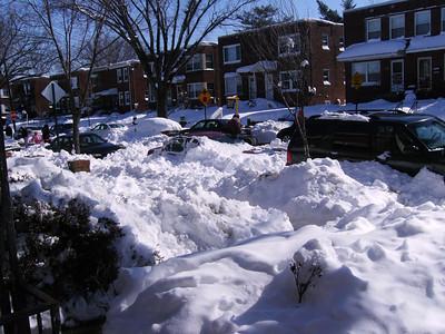 February 8, 2010