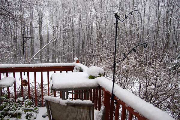 First 2009 snow
