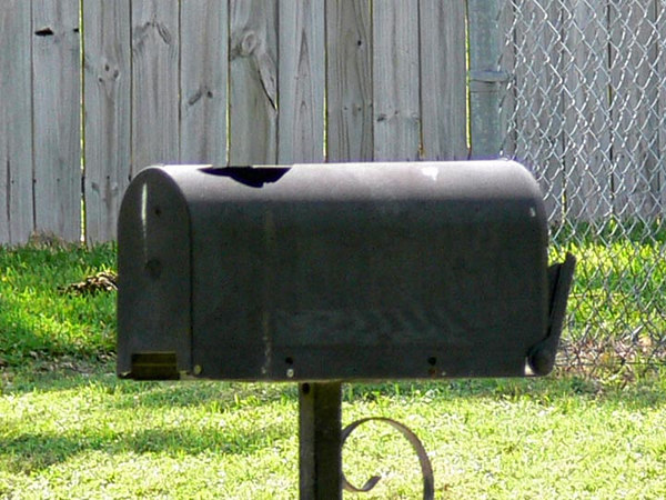 Our Next Door Neighbor's Mail Box.
