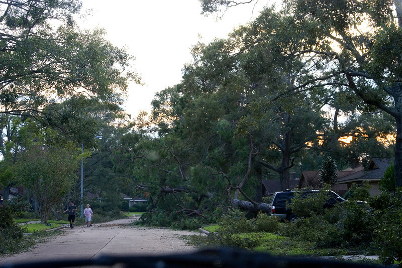 September 14:  A neighborhood in El Lago.  Tons of trees down, wires down, houses & cars crushed.