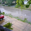 The view out the front on the morning after - shredded foilage blocking gutters caused very limited flooding. Its still raining!