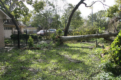 Tree leaning into neighbors yard.    Mom and dad's house. ... Our first look after getting back from Junction, TX (evacuation).