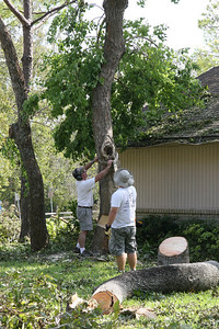 Mom and Dad's house.   ...both brother's in-law.  Clearing out 3 fallen trees surrounding the garage.