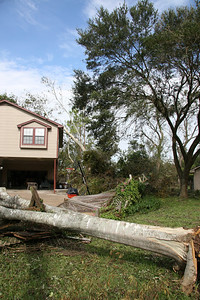 Just a little problem with the 7 foot fence.  *note the tree leaning on the neighbor's garage.  Mom and dad's house. ... Our first look after getting back from Junction, TX (evacuation).