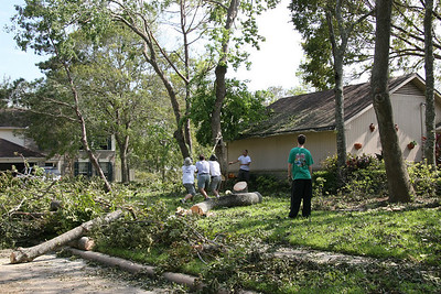 Clearing out 3 fallen trees surrounding the garage.