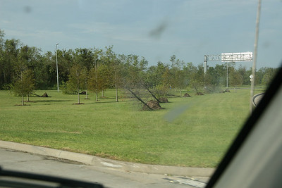 I wonder which way the wind was blowing?