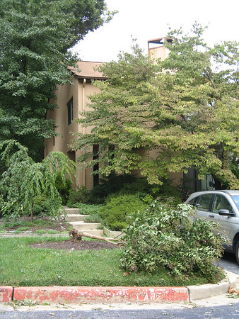 The front of my house with the fallen tree.  8-27-11