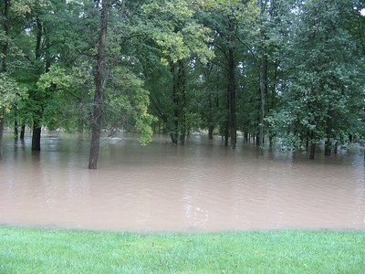 The normal lake shore is invisible through the trees -- this is all floodwater.   9-7-11