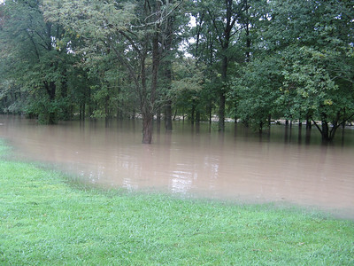 The floodwater is a thick, ugly brown.  9-7-11