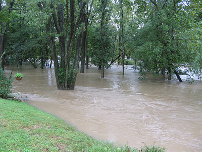 On the other side of our community is the Little Patuxent River. This view is just above Lake Kittamaqundi, looking upstream. The actual riverbank is far in the background, where the water looks lighter in color. The water is moving very swiftly -- anything falling into this current would be swept away.   9-7-11