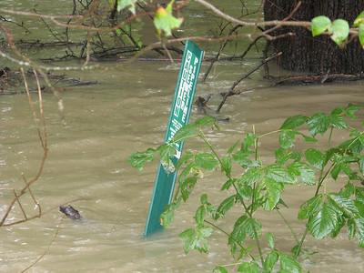The signpost advises that it is a sewer pipeline.   9-7-11