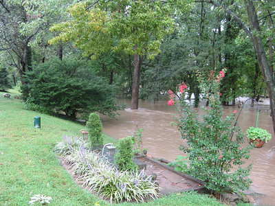 The ground slopes down quite a lot from here to the river, so it must be at least 20 feet or more above flood stage.  9-7-11