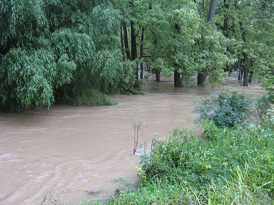 The Little Patuxent River looking downstream. It's normally separated from the lake by a wide berm, but that's completely under water now; the lake, the river and the drainage on the east side of the community are all merged into one huge body of water.  9-7-11