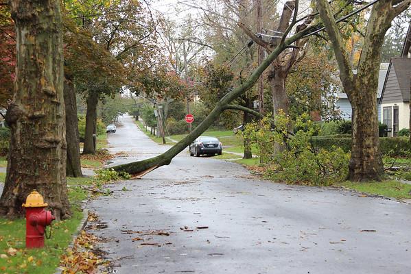hurricane sandy - crestwood