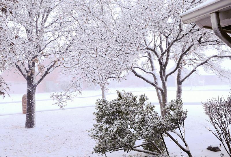 Ice-Snow Storm 1-28-2010