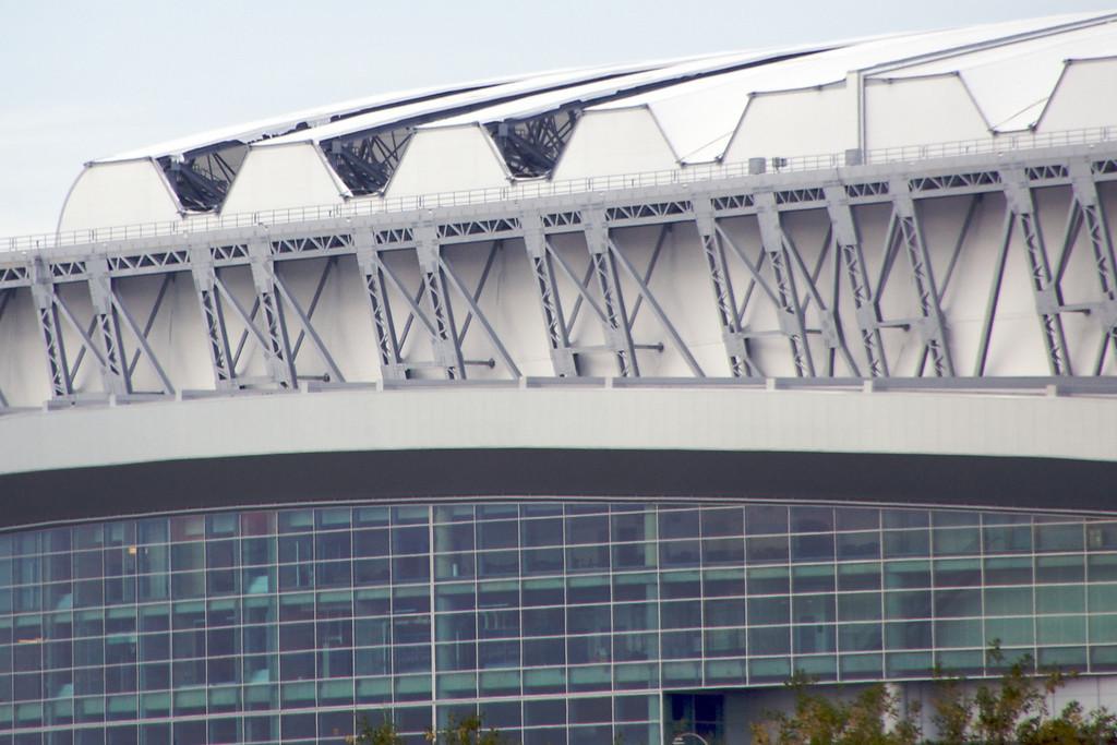 Reliant Stadium - Holes in the Roof