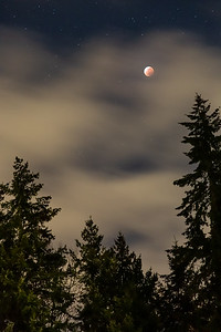 Total lunar eclipse, a few minutes from peak of the eclipse. Shooting through clearing clouds as the moon rises over the trees to the east of our house. This image is an HDR containing 3 base images. The clouds and trees are exposed for 8 seconds while the moon and stars are exposed for 0.5 seconds with some slight tweaks to exposure.
