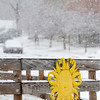 A sun decoration on Snow St. in Fitchburg contrasts Saturday's snowy weather.<br /> SENTINEL & ENTERPRISE / BRETT CRAWFORD