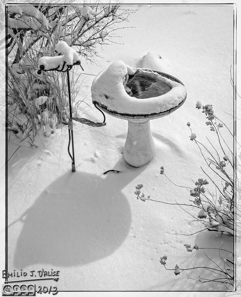 February 2013 Snow Storm