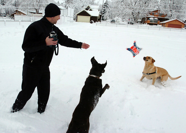 Spring Snow11.JPG Ryan Padilla throws a dog toy to his dog Hunter, left, and another dog, Wiley, at North Boulder Park on Wednesday, March 24th, 2010.<br /> Cliff Grassmick / March 24, 2010