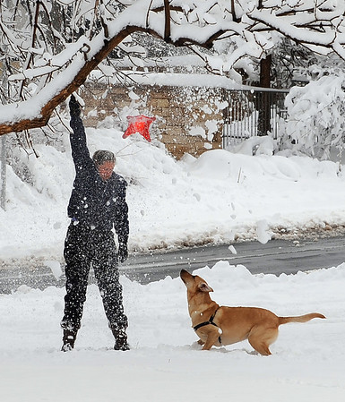 Spring Snow45.JPG Beth Cohen shakes a dog toy out of a tree as her dog Wiley waits in North Boulder Park on Wednesday March 24th, 2010.<br /> Cliff Grassmick / March 24, 2010