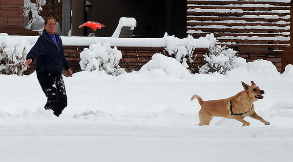Spring Snow23.JPG Beth Cohen throws a dog toy to her dog Wiley on March 24th, 2010 at North Boulder Park.<br /> Cliff Grassmick / March 24, 2010